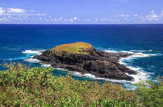 Scott Harris - Kilauea Lighthouse Island
