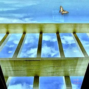 kingdom of Sky by Jack Eadon