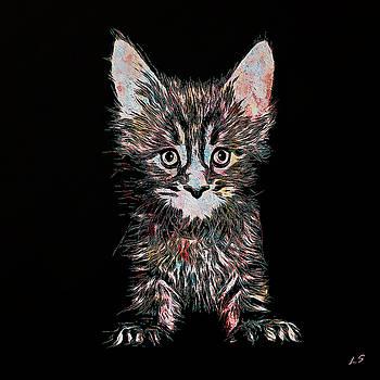 Kitten by Sergey Lukashin