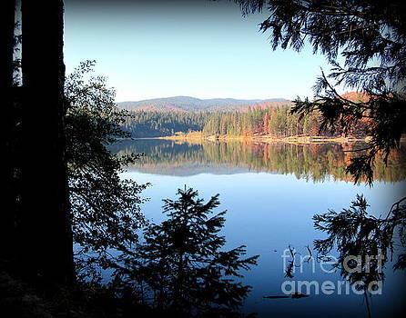 Lake Britton at Burney Falls State Park by Joy Patzner