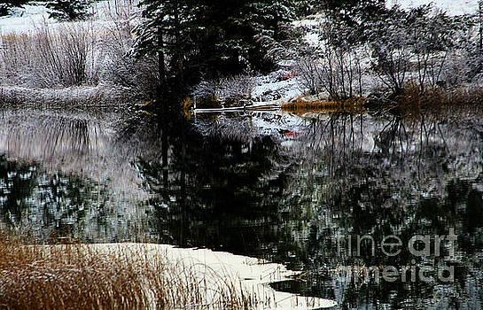Roland Stanke - Lake shore reflections