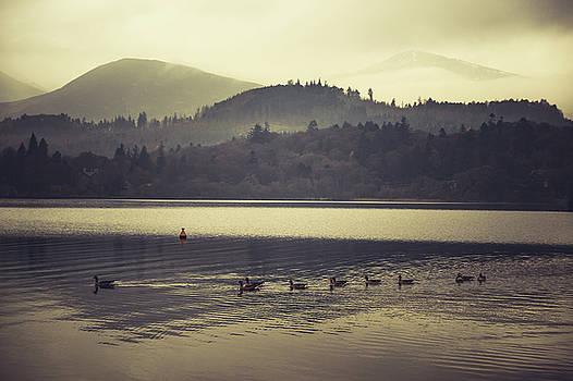 Lake View by David Ridley