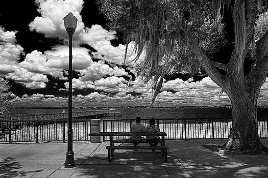 Lake View by Lewis Mann