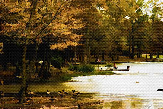 Lakeside Morning by Barry Jones