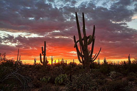 Late Summer Sunset by Ryan Seek