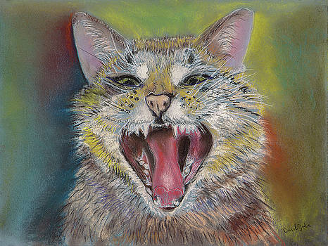 Laughing Cat Don't Count on It by Carol Jobe