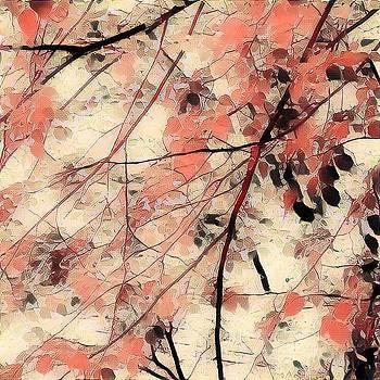 Leaf You 2 by Devorah Malek