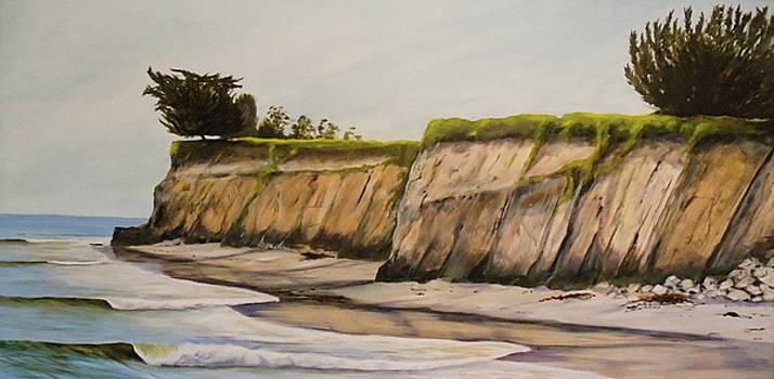 Ledbetter Beach Winter by Jeffrey Campbell