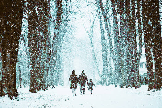 Let It Snow by Marji Lang