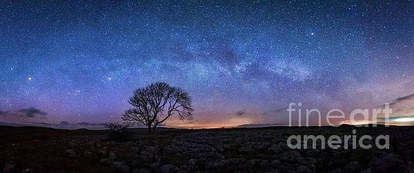 Mariusz Talarek - Limestone, Lonely Tree and Milky Way - panoramic