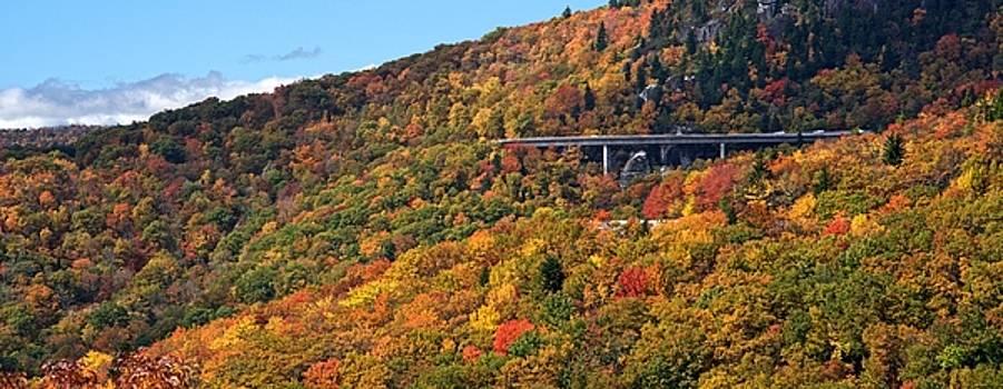 Linn Cove Viaduct and Fall Leaves by Matt Plyler