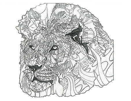 Lion by Jacob Hurley