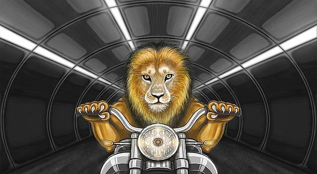 Lion on motorcycle by Tahir Tahirov