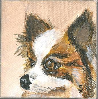 Little Dog by Sarah Lowe