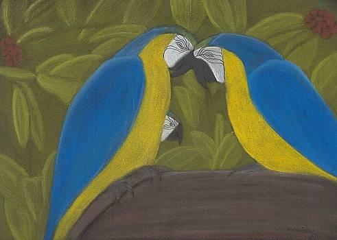 Little Macaw by Vonna Beam