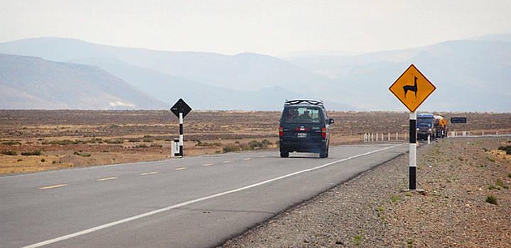 Llama road sign in Peru by Eduardo Huelin