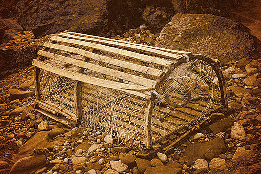 Lobster Trap by WB Johnston