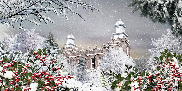 Logan Temple - Winter by Brent Borup