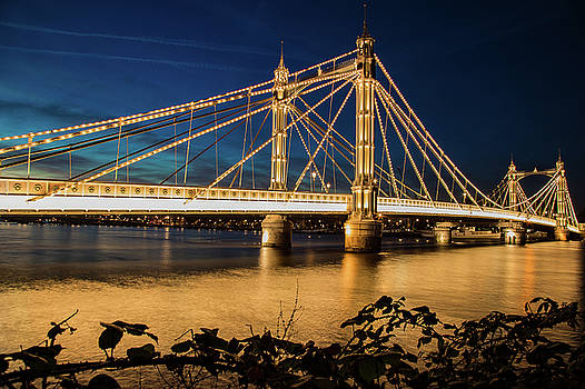 London Albert Bridge by Mariusz Czajkowski
