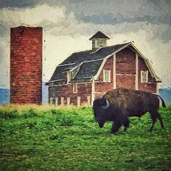 Lone Bison by Richard Keer