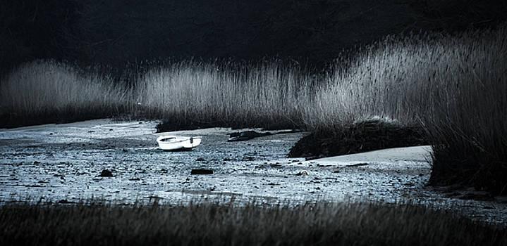 Svetlana Sewell - Lost Boat
