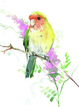 Lovebird by Suren Nersisyan