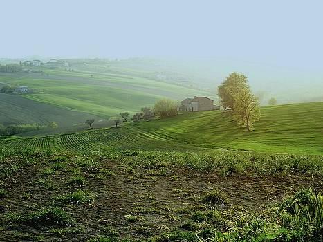 Luce su colline by Alberto V  Donati