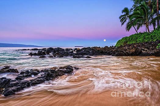 Jamie Pham - Lunar Paradise