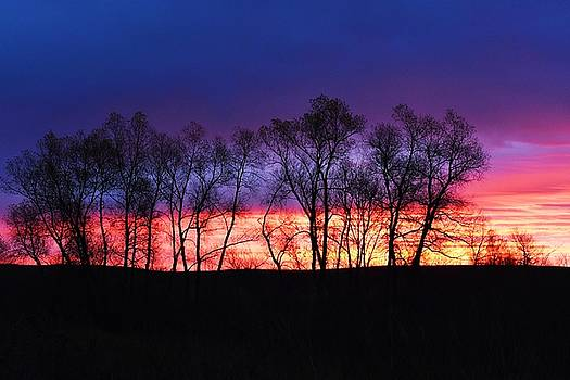 Magical Sunrise by Dacia Doroff