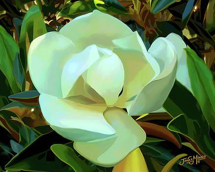 Magnolia Flower by James  Mingo
