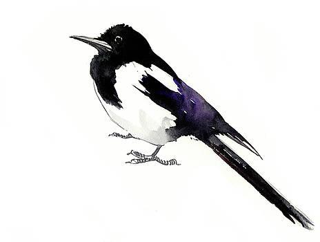 Magpie by Suren Nersisyan