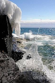 Making a Splash by Sandra Updyke