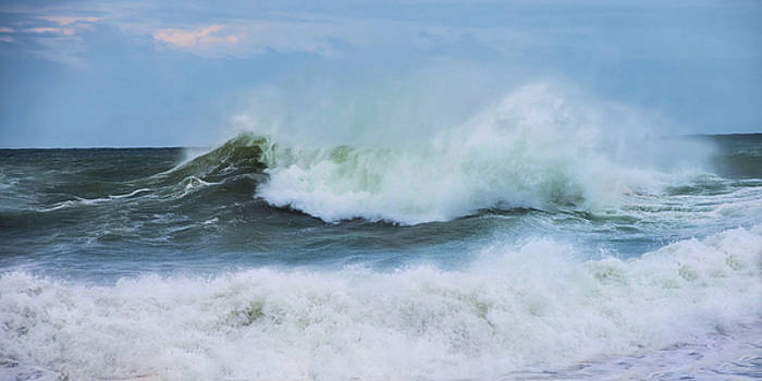 Making Waves by Robin-Lee Vieira