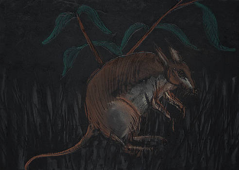 Malagasy Giant Jumping Rat by Darkest Artist