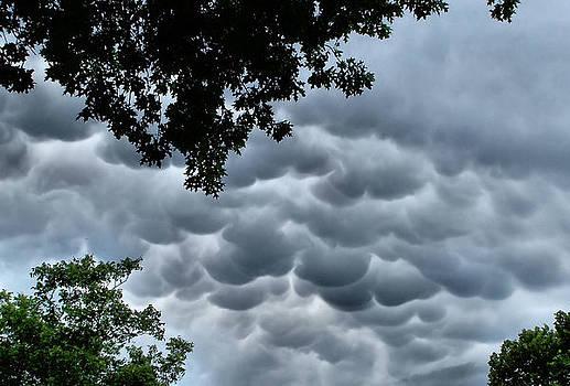 Karen M Scovill - Mammatus Clouds