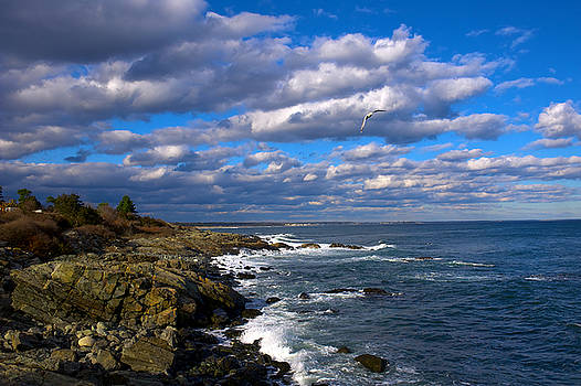 Marginal Way by Tom Callan