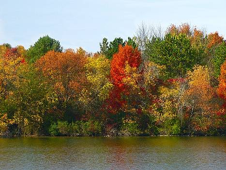 Scott Hovind - Michigan Fall Colors