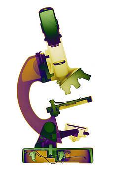 Roy Livingston - Microscope X-ray Art Photograph