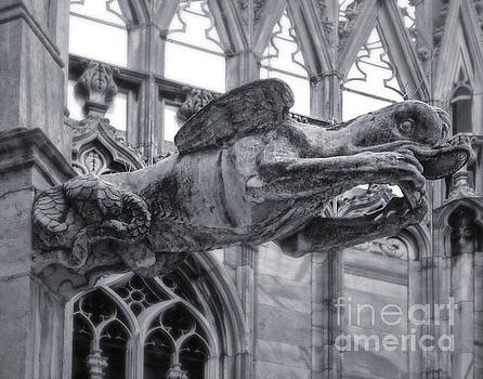 Gregory Dyer - Milan Cathedral Gargoyle In Black And White