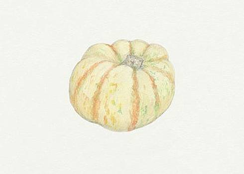 Mini Pumpkin by Tara Poole