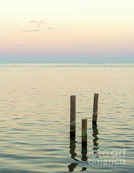 Tim Hester - Minimalist Ocean Landscape