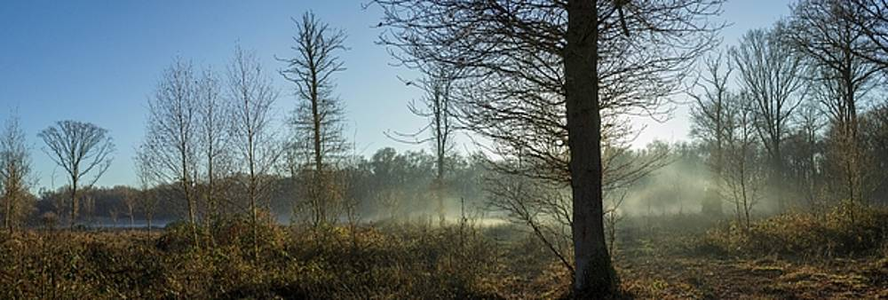 Stewart Marsden - Misty morning