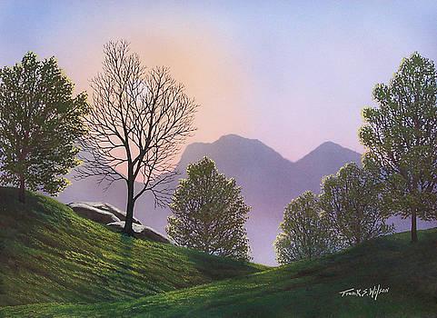 Frank Wilson - Misty Spring Meadow