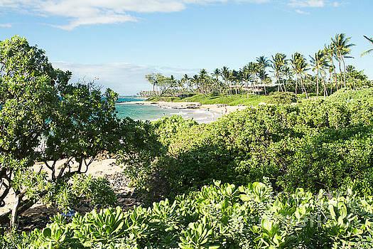 Mokapu Ulua Beach Wailea Maui Hawaii by Sharon Mau