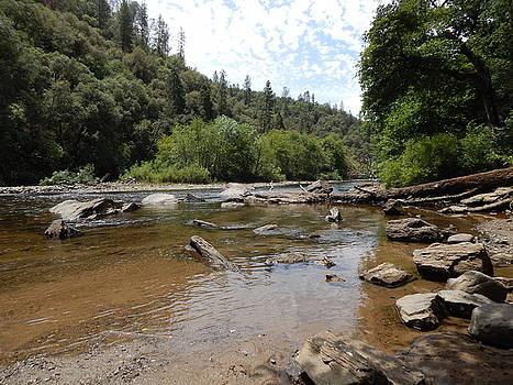 Mokelumne River  by Susan Ince