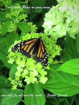 Monarch Butterfly by Betsy Cullen