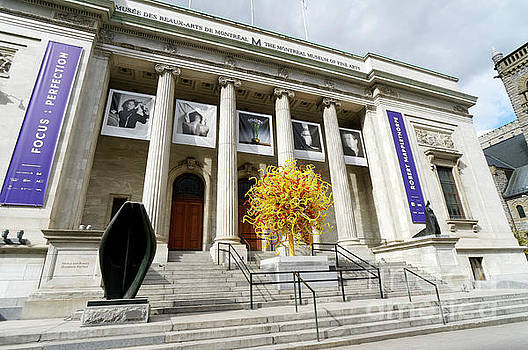 Montreal Museum of Fine Arts by John  Mitchell
