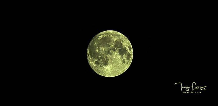 Moon Over Albuquerque by Tony Lopez