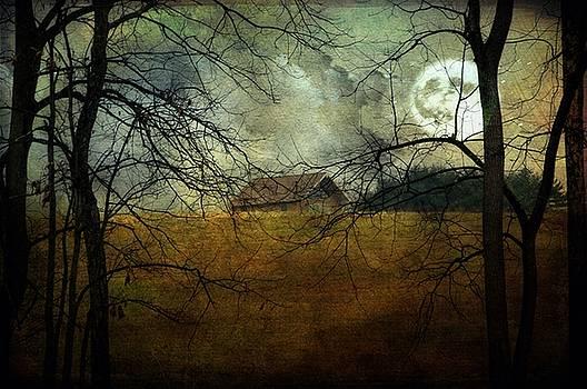 Moonlit by Stephanie Calhoun