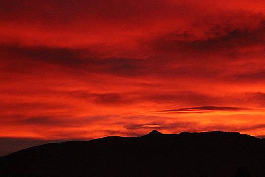Morning Fire by Ann Sullivan